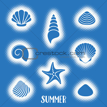 Vector summer card with sea shells