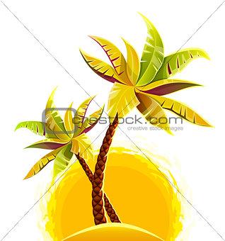 Coconut palm trees on sand island
