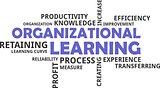 word cloud - organizational learning