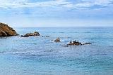 Sea birds cormorants, mountain Sa Palomera. Blanes