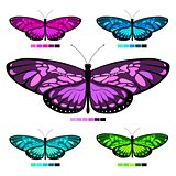 vector butterfly set 6