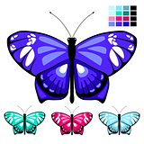 vector butterfly set 9