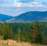 Summer Ihrovets mountain view (Carpathian, Ukraine).