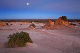 Desert landscape at dawn