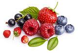 Set fresh berry. Mix summery fruit raspberry