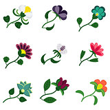 flat color flower set