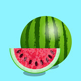Watermelon and cut slice. Texture of the watermelon with seed. Vector illustration. Blue background