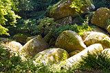 The Gigantic Boulders of Huelgoat Forest, France