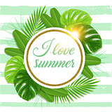 Summer tropical background with green palm leaves.