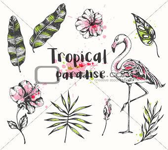 Pink flamingo, palm and banana leaves.