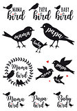 mama bird, papa bird, baby, vector set