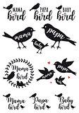 mama bird, papa bird, baby, vector set