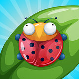 Insect, ladybug, beetle - cartoon illustration.