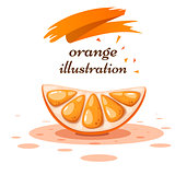 Cartoon orange on the white background.