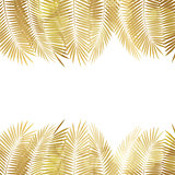 Gold Palm Leaf Vector Background. Vector Illustration