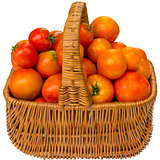 Fresh tomatoes in a basket on a white background.