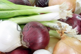Background of onions