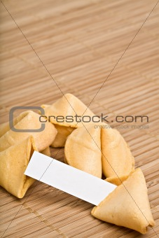 fortune cookies your text