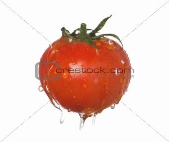 tomatoe splash