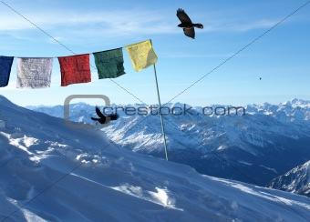 blank signal series - tibet