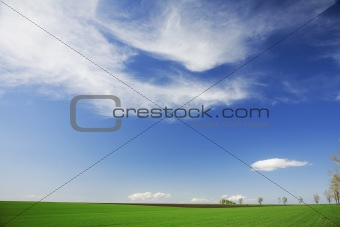 Green field, white clouds, blue skies