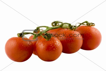 Six fresh tomatos isolated on white background