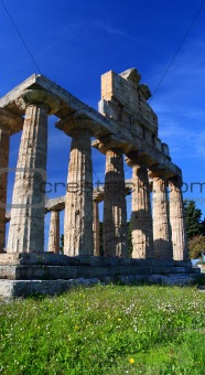 Antique ruins in Paestum