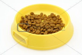 cat food on white