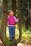 Little beauty girl on tree