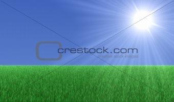 Sun over grass