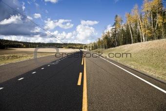 Country Road Arizona USA (LJ)