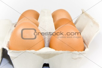 Six eggs in carton isolated