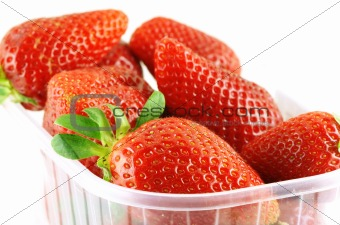 close up of a container full of fresh strawberry