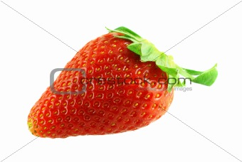 close up shot of single fresh ripe strawberry