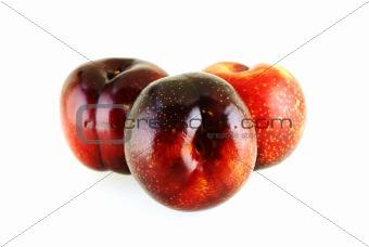 three fresh ripe sweet plums