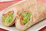 organic healthy wrap