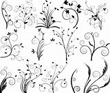 Floral elements for design - vector