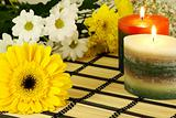 romantic relaxing scene with flowers