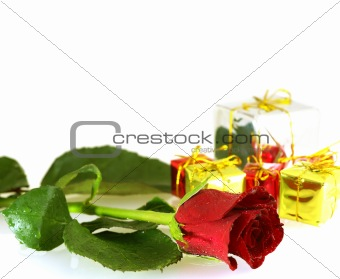 close up shot of rose with droplets and gift boxes