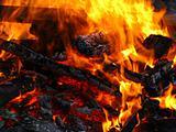 Fire#7