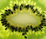 extrime close up  of kiwi fruit