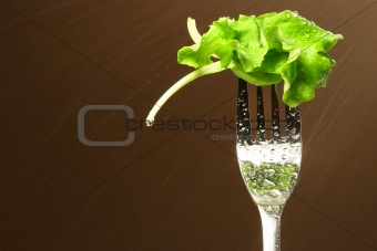 Leaf of lettuce on a fork