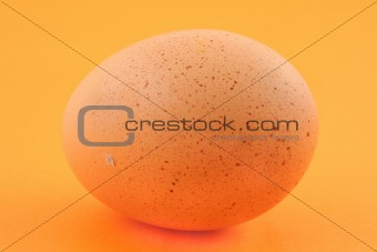 free-range egg with natural spots