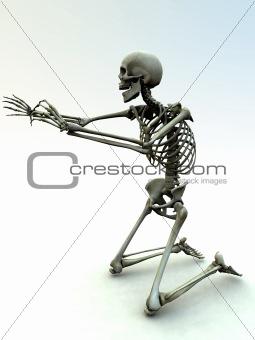 Skelton 35