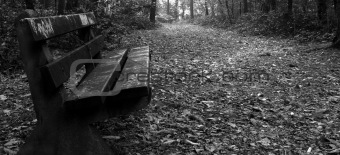 Old park bench
