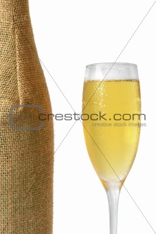 Champagne and Bottle