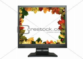 autumn frame in LCD on white