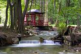 japan canopy over creek