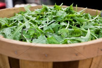 A basketful of leaf lettuce at farmer's market