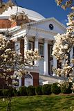 Rotunda at UVA in spring